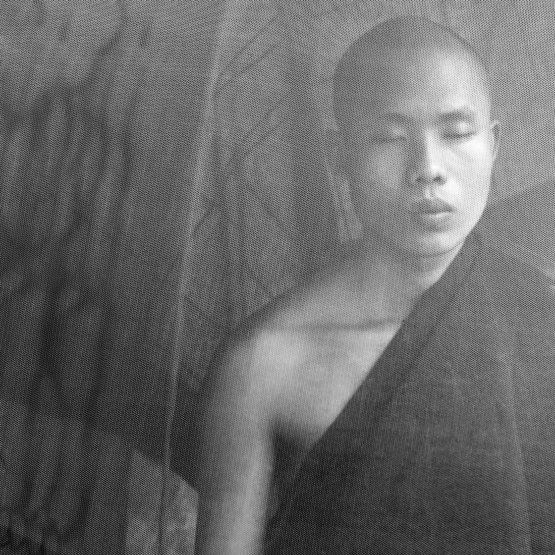 Seeking Enlightenment - The Mosquito Nets