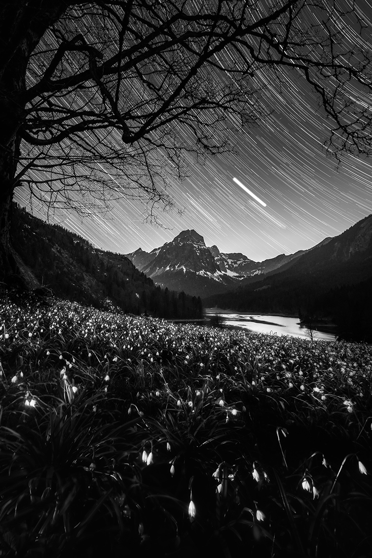 Star trails above Obersee
