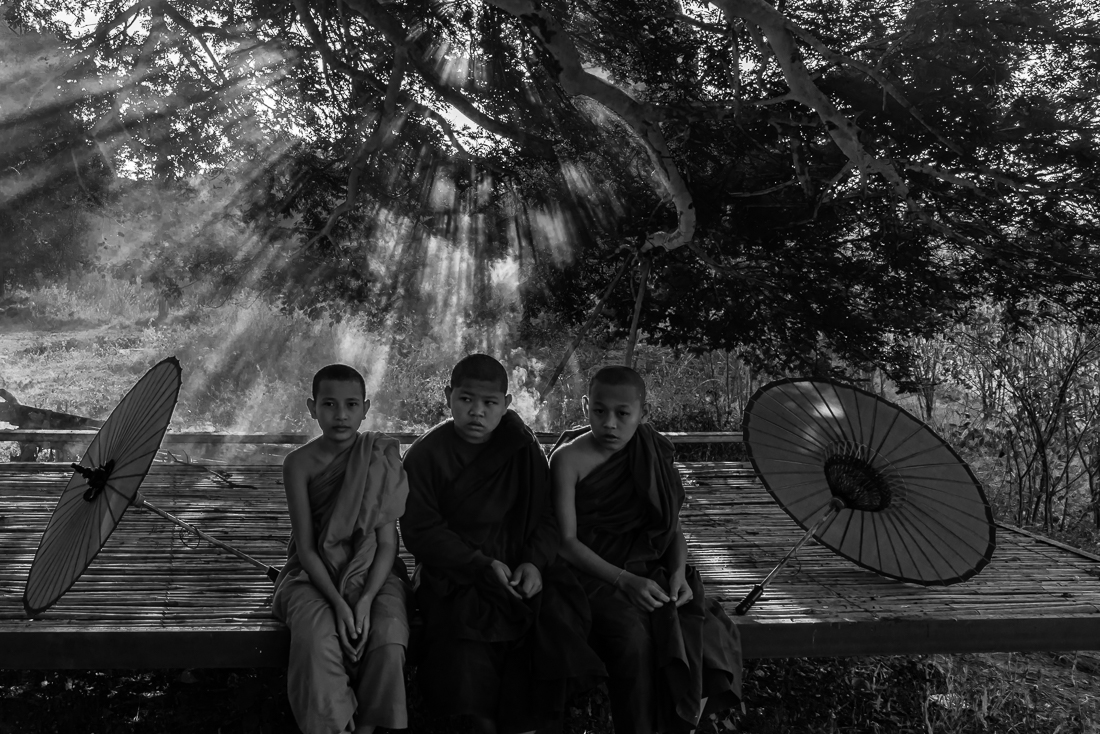 Novices with Rays of sunlight