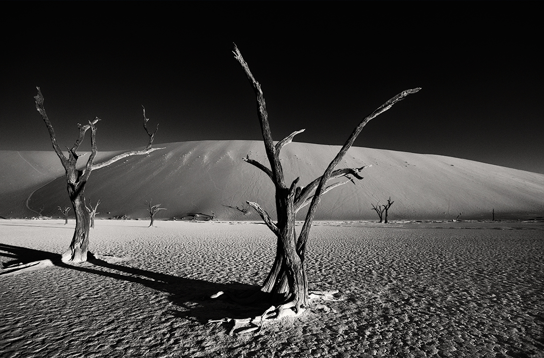 Songs of the desert  | Sossusvlei