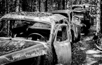Lost-Car-Forest