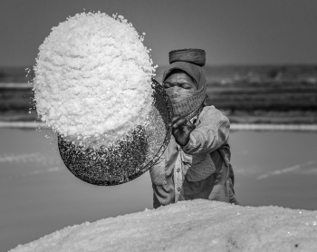 The Hidden Heroes - The Salt Workers from Gujarat