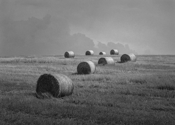 Eight bales