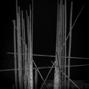 The Bamboo Incubation