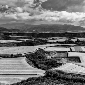 The greed for water - Agriculture in Andalusia